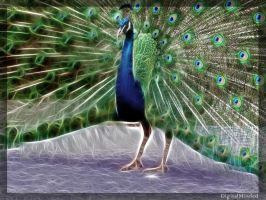 Fract-half peacock by digitalminded