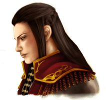 DW7 Zhou Yu - colour practise by cheesyporridge2121
