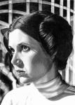 2-2012 Portraits of Leia: Royal Robe by khinson