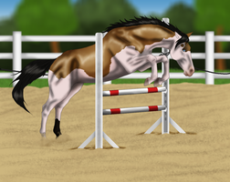 Shift Free Jumping Training by Lucid-Dimensions