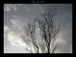 Sky of ashes... by slipandslidesuicide