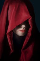 Hooded Assassin by PhoenixalThor