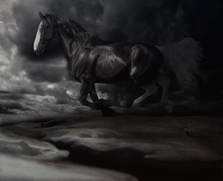 follow the night:: legion by equirena