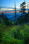 Smoky Mountain 3 by ThomasMcKownPhoto