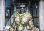 Borgakh elven armor close by swept-wing-racer