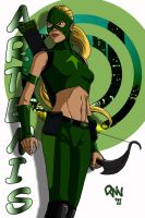 Artemis from Young Justice by CodenameZeus