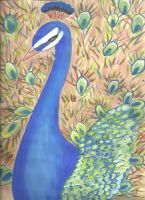 Drawing with My Mum: Peacock by greyamoon