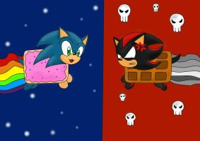 Nyan Sonic and Nayn Shadow by Fear-Kun