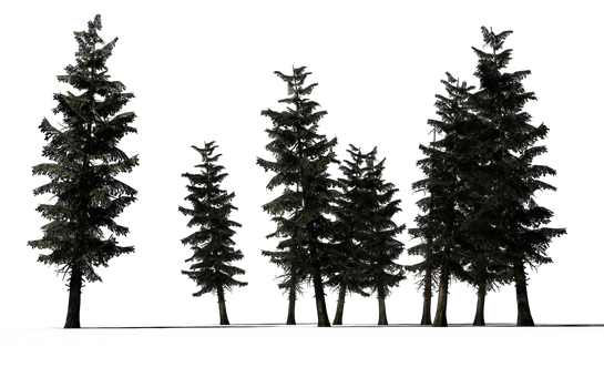 Super Sapins hd (2) by coolzero2a