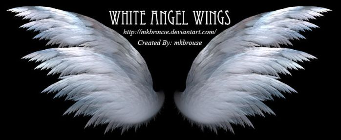 White Angel Wings - Fractal by mkbrouse