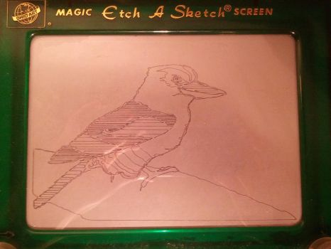 Etch A Sketch Kookaburra by theangrybuddha