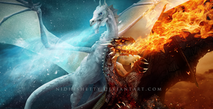 Of Fire and Ice by NidhiShetty