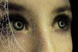 Caught in a Web of Lies by angelmarlo
