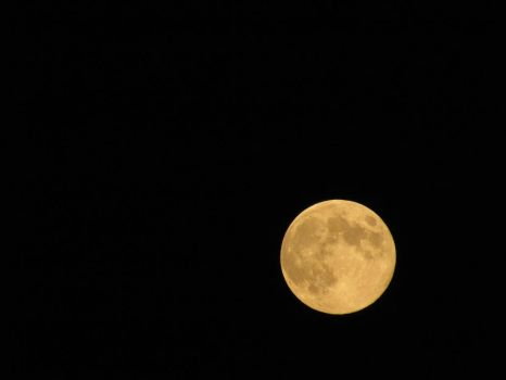 Full Moon by pmiccich