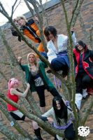 Ninjas in a Tree by 2-of-a-kind