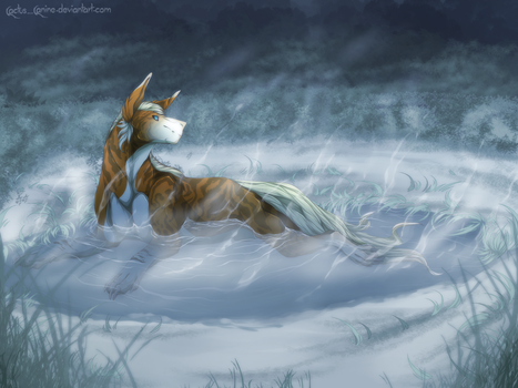 Winter Hot Springs by Cactus-Canine