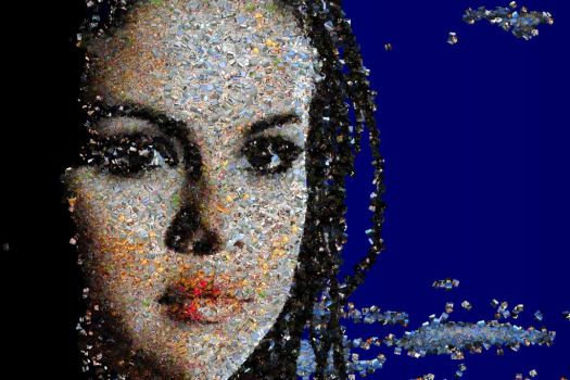 Selena Gomez photo mosaic by Mosaikify