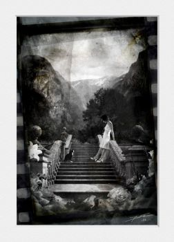 The Stairs bw version by linecut