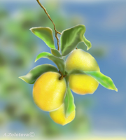 Lemons on a branch by AnnaZLove