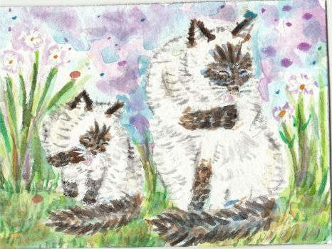 Siamese cats Bathtime watercolor painting by tulipteardrops