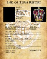 Gryffindor Report Card by sarahsaintly