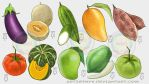 DepEd LR: Fruits Vegetables and Root crop #1 by artistmyx