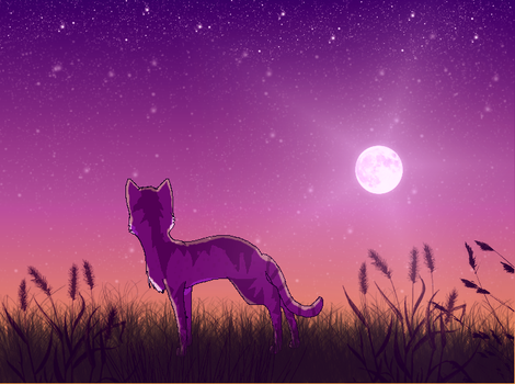 ~Starfield~ by Field-Of-Roses