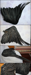 Cormorant Wing by CheeTaxi