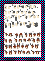 Laterius Ear and Tail Chart drawn by Elietia by Storyteller-Hakiri