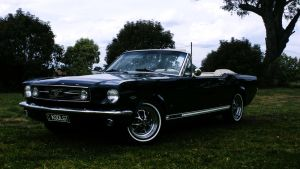 1966 Mustang GT by aNdre-W