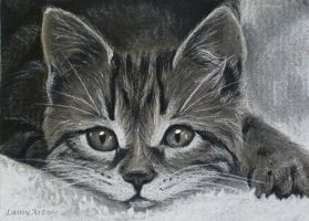 Day 116 - ACEO Drawing Project by secrets-of-the-pen