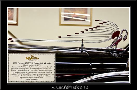 39 Packard Victoria Hood Ornament-Antenna by mahu54