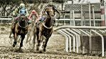 A Day At The Races  -G Force by AndersStangl