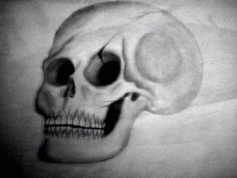 Skull by AsTheNeedleScratches
