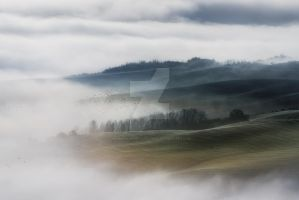 Fog on the valley fields Val d'Orcia by naumenkophotographer