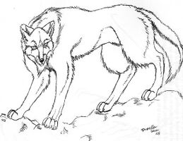 wolf by arcticfoxie