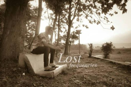 Lost Frequencies  by dhurzz