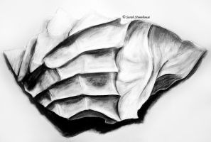 Hand Cast Drawing by ScenicSarah