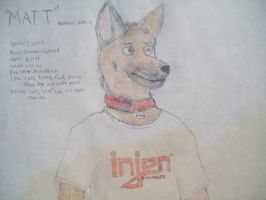 My fursona: Colored by acefighter028