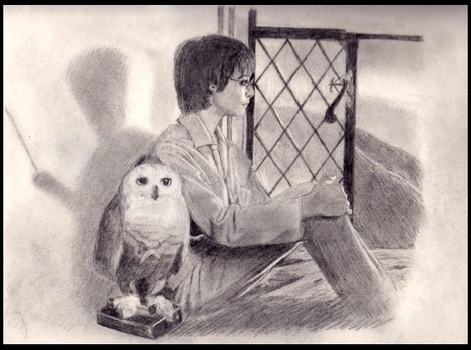 Harry and Hedwig (Harry Potter fanart) by WesterosRaven