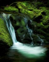 Fundy Cascade by AEisnor