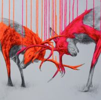 Wild times by LouiseMcNaught