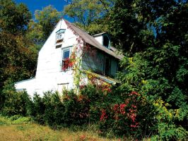 Abandoned House 7 by FairieGoodMother