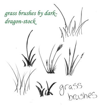 grass brushes by dark-dragon-stock