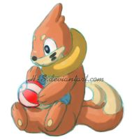 Practice Buizel by H-S