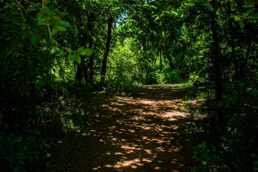 Hidden Parkway 1 by SilverAce88