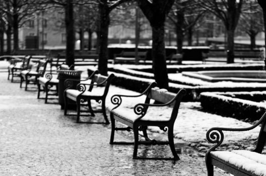 The benches by OlivierAccart