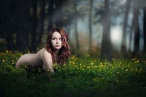 Kitteh by idaniphotography