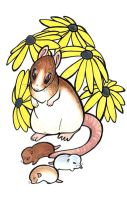 Mother's day rat by lizspit