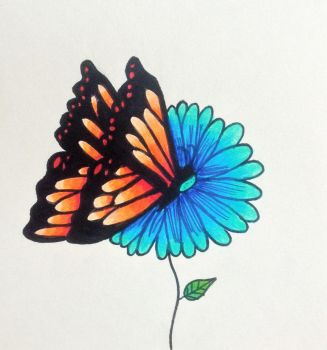 Butterfly by SinoraViolet